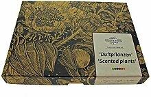 'Duftpflanzen' Samen-Geschenkset mit 6