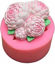 3D Blumenkuchen Silikonform Fondant Kuchen