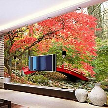 3D Foto Tapete Wasserfall Landschaft