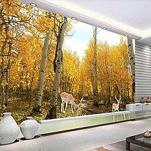 3D Fototapete Natürlicher Birkenwald Goldener