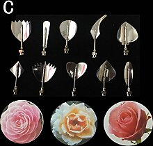 3D Gelatin Art Tools,Jelly Cake Flower Tools,Jelly Cake Needles- Set of 10 PCS by Goannra with Stainless Steel Pudding Pastry Nozzles for beginners to advanced learners. (C)
