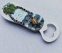 3D Hawaii USA Souvenir Kühlschrank Magnet
