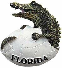 3D Krokodil Florida USA Kühlschrank