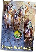 3D Rose Englische Bulldogge Geburtstag TWL_39567_1
