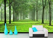 3D Tapete - 200X140CM-XL Grün Wald Landschaft