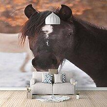 3D Tapete Dunkles Pferd 3D Wandbilder Für