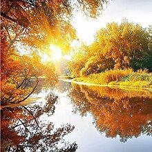3D Tapete Effekte Herbst, Baum Vlies Tapete
