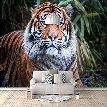 3D Tapete Tiger 3D Wandbilder Für Fernseher