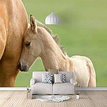 3D Tapete Vlies Weißes Pferd 3D Wandbilder Für