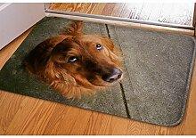 3D-Teppich-Flanell Tier-Hund Visueller Raum Druck Wasserabsorption Anti-Rutsch Ultra-dünne Tür-Tür-Matten Badezimmer-Fußauflage 40 * 60cm , 7