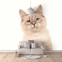 3D Wandbilder Süße Katze Fototapete Moderne