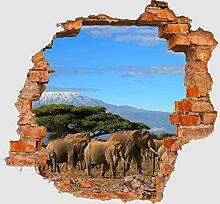3D-Wandsticker Kilimandscharo Aufkleber Mauerdurchbruch M0029 | Design 02 | mittel