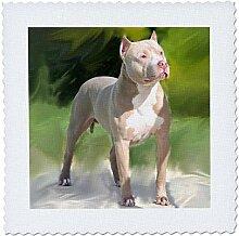 3dRose American Pit Bull Terrier, Quilt, Platz,