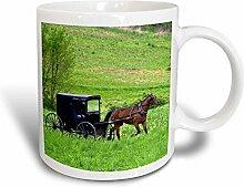 3dRose Amish Kinderwagen, mit Berlin, Ohio
