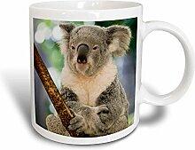 3dRose Australien, Brisbane Fig mit Tasche, Koala
