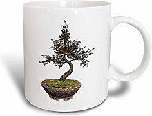 3dRose Baum Bonsai mit Kirschen 11oz Tasse,