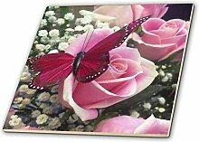 3dRose Bild von Einer rosa