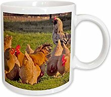 3dRose Chickens Group Becher, 325 ml