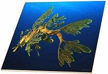 3dRose CT 46260_ 4grünen Sea