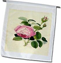 3dRose FL_163092_1 Bild von rosafarbenem Kohl