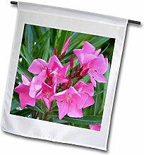 3drose FL _ 46849_ 1Oleander pink-pink, Blume, Baum, oleander, Blossom, Tropische Pflanze, Buds Garten Flagge, 12von 18