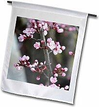 3dRose FL 51376_ 1Cherry Blossom Branch-Spring