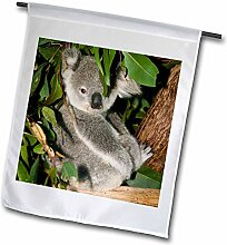 3dRose FL_70224_1 Australien, Brisbane,