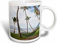 3dRose, hawaiianische Palme, Maui,