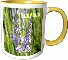 3dRose Lavendel-Blumen-Gratitude-inspirierende