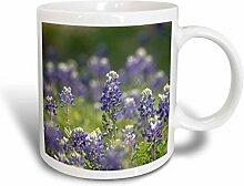 3dRose Mug_205281_1 Becher, Keramik, blau, 11 oz