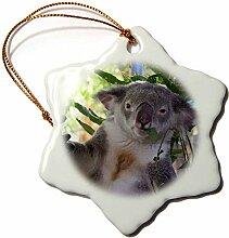 3dRose ORN 22800_ 1Cute Koala Essen Eukalyptus