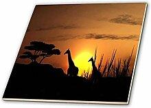 3dRose Paar Giraffen in der afrikanischen