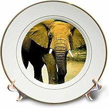3dRose Porzellanteller, afrikanischer Elefant,