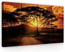 4-tlg. Leinwandbilder-Set Afrika ModernMoments