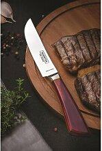 4-tlg. Steakmesser-Set Pampas