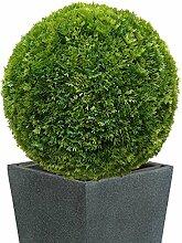 40 cm Ø künstliche Thuja - Buchsbaumkugel, sehr