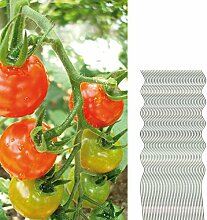 40 Tomatenspiralstäbe 110cm voll verzinkt Tomatenstab Tomaten Ranke Pflanzstab Stahl Profi Qualität Tomatenspiralstab