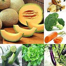 400 Stück/Set Gemüse Obst Blumensamen 20-Arten