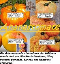 40x Ananas Tomaten Gelb-Rot Samen Pflanze Rarität Tomate essbar lecker Gemüse Saatgut Neuheit #49
