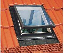 46x55 Optilook WGT Dachausstiegsfenster für