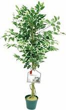 4ft künstlich veränderter Ficus Baum, realistische grüne Pflanze - De Vielle