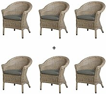 4Seasons Outdoor Chester 6er Set Dining Sessel Polyrattan Pure inkl Kissen