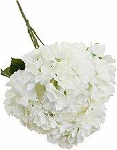 5-Köpfe Kunstseide Blume Hortensie Pflanze Hochzeit Haus Wohnzimmer Vase Dekor - Weiß, 7cm