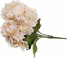 5-Köpfe Kunstseide Blume Hortensie Pflanze Hochzeit Haus Wohnzimmer Vase Dekor - Champagner, 7cm