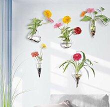 5 Stück Kreative Glas Wandvase Wandbehäng Glas