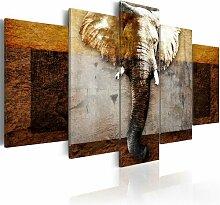 5-tlg. Leinwandbilder-Set Stärke von Afrika