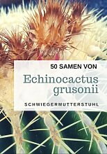 50 frische Samen des Echinocactus grusonii - der