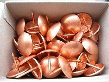 50 Kupfer groß auf Stahl Nägel für Polstermöbel - 20 mm (Zoll ¾) Durchmesser Kopf