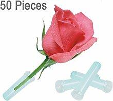 50 Packungs 7.5cm klare Blumenwasserstandard Rohr