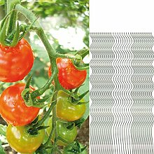 50 Tomatenspiralstäbe 150cm voll verzinkt Tomatenstab Tomaten Ranke Pflanzstab Stahl Profi Qualität Tomatenspiralstab